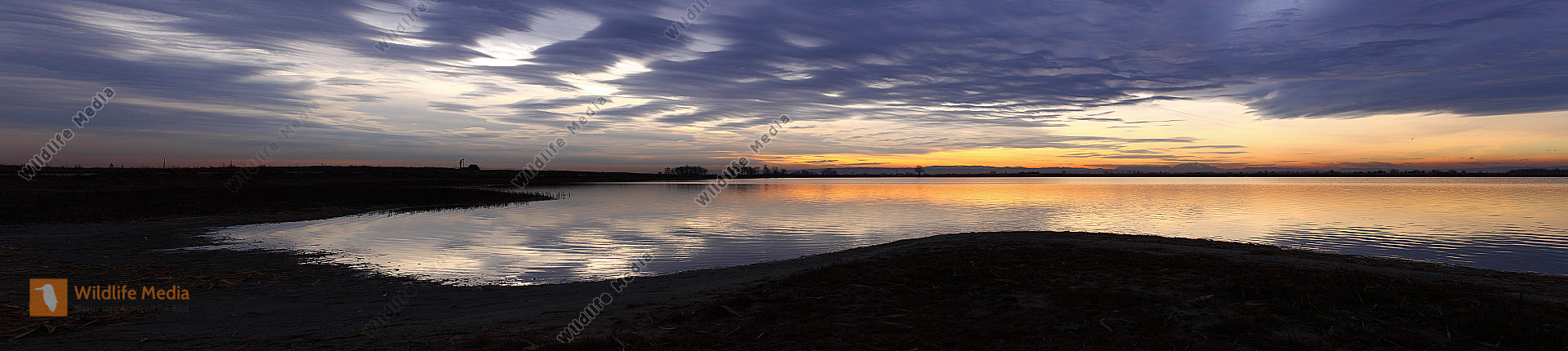 Seewinkel Panoramabild