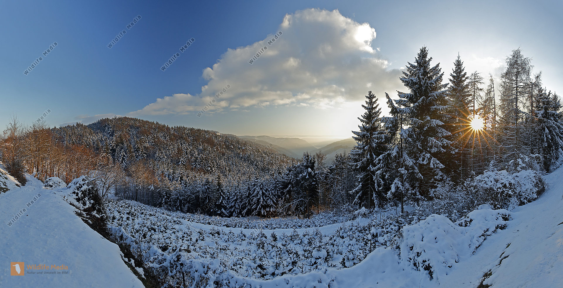 Wachau im Winter Panorama